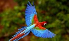 Kostarika – Země živých vulkánů