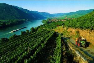 Romantické údolí Wachau