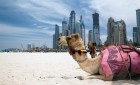 Spojené Arabské Emiráty – Pobyt vDubaji
