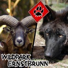 Ernstbrunn ZOO