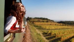 Vinařská cyklostezka spojízdnou vinotékou