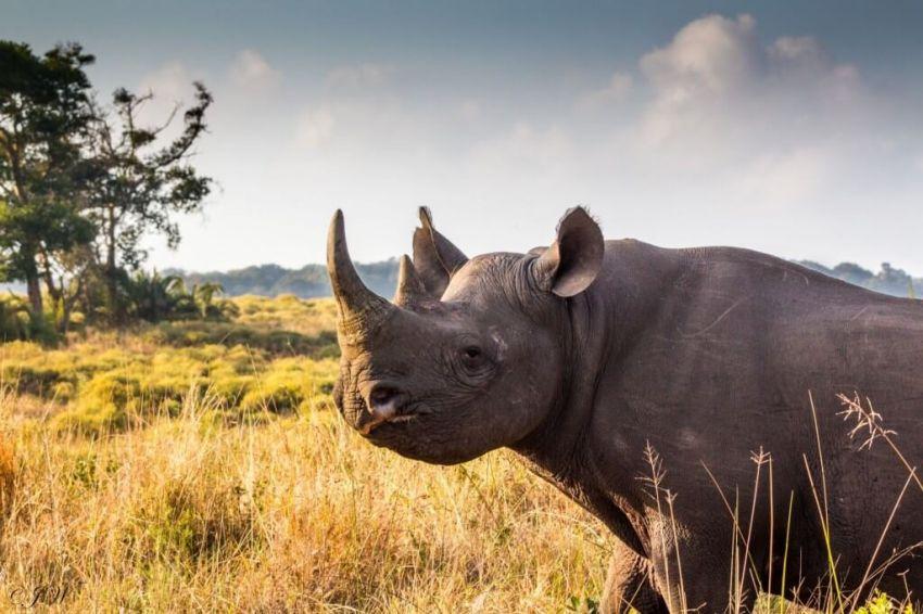 Jihoafrická republika – Krásy Jižní Afriky