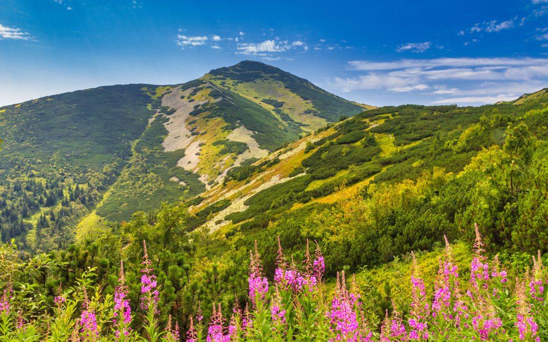 Slovensko | Kysuce – Malá Fatra – Orava