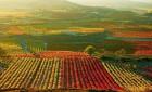 Vinařské oblasti severního Španělska