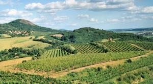 Čechy aSasko – Cesta za evropským vinařstvím