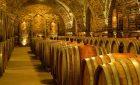 Cesta za evropským vinařstvím – Slovensko / Maďarsko