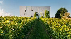 Vinařské Rakousko