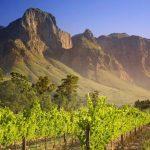 Vinařská Jihoafrická republika